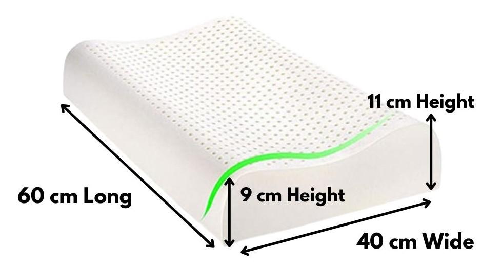 latex contour pillow online